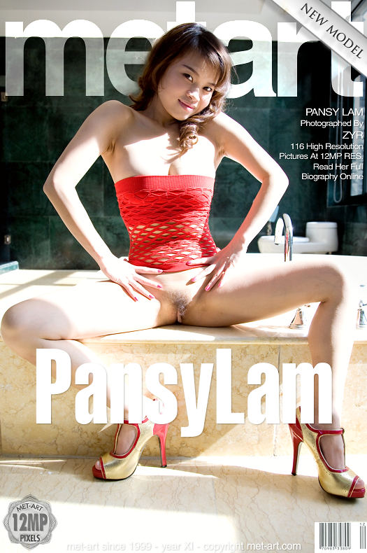 MetArt [2009-02-27_PRESENTING-PANSY-LAM] 27.02.2009 Pansy Lam - Presenting Pansy Lam by Zyr
