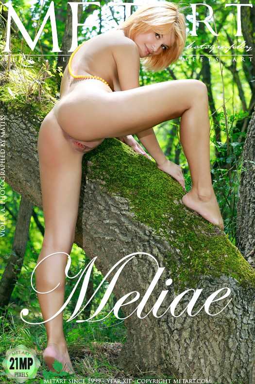 MetArt [2012-11-23_MELIAE] 23.11.2012 Violla A - Meliae by Matiss